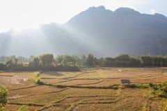 Campos y montaña y cabaña Imagen de archivo libre de regalías