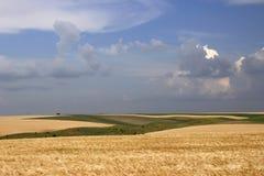 Campos y nubes fotos de archivo