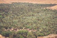 Campos y palmas cultivados en la África del Norte A de Errachidia Marruecos imagenes de archivo