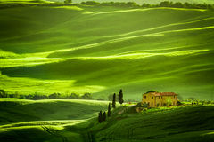 Campos y prados verdes con agrotourism Foto de archivo