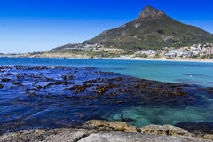 Camps Bay and Lion's head Royalty Free Stock Photos