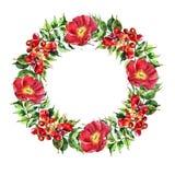 Campsis, peony  flowers wreath ,  watercolor Stock Image