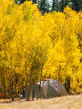 campsite photos stock
