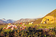 Campsite at Alftavatn, Iceland. Campsite at Alftavatn in evening light with focus on foreground, Iceland Stock Photography