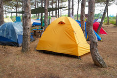 Campsite in the forest Stock Photography