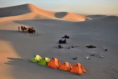 The campsite inside the desert´s sand dunes. Night in the desert. Camels near the colorful tents stock photos