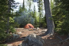 Campsite with orange tent and fire in the northern Minnesota wilderness. Campsite with orange tent and fire set among pines in the northern Minnesota wilderness royalty free stock image