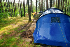 Campsite after rain. Campsite in a sunny forest after rain Stock Photos