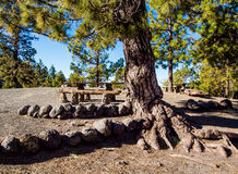 Campsite on the southern slopes of Teide Royalty Free Stock Images