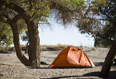 Campsite with Tent Stock Photography