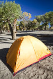 Campsite with Tent Stock Image