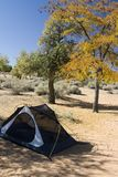 Campsite with Tent in Desert Stock Photography