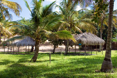Campsite under palm trees in Mozambique, East Africa. Royalty Free Stock Photography