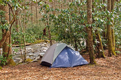 Campsite in the wilds Stock Images