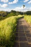 Campuhan Ridge Path photographie stock libre de droits