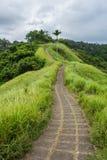 Campuhan Ridge Walk. Ubud, Bali Royalty Free Stock Image