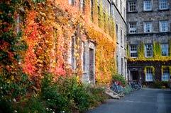 Campus à l'université de trinité. Dublin, Irlande Image libre de droits