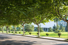The campus beautiful scenery stock photography