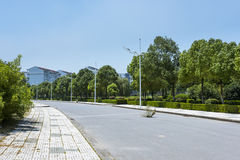 The campus beautiful scenery Stock Images