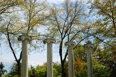 Campus in Bloom. University of Washington Campus Columns Stock Photography