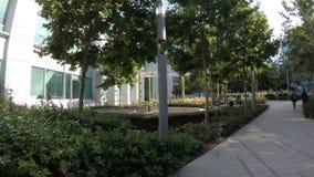 Campus de la tecnología de Google metrajes