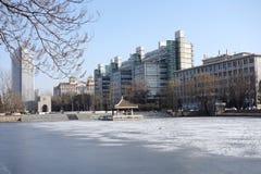 Campus del invierno Imagen de archivo libre de regalías