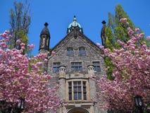 Campus gótico de la universidad del estilo Foto de archivo