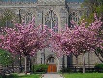 Campus gótico de la universidad del estilo Fotografía de archivo