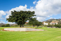 Campus at Pepperdine University Royalty Free Stock Photo