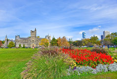 Campus of Toronto University in autumn Royalty Free Stock Images