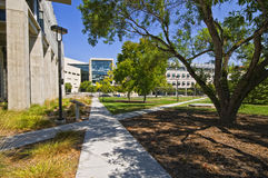 Campus, UC San Diego. Buildings situation in the middle of campus at University of California, San Diego, . Known as UCSD, the University is considered one of royalty free stock images
