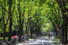 Campus universitaire de Taïwan Photo libre de droits