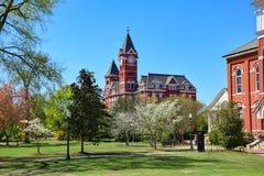 Campus universitario castaño Fotos de archivo