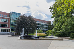 Campus universitario dello stato del Michigan Fotografia Stock