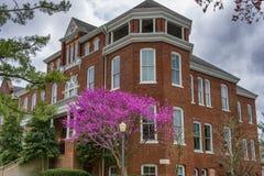 Campus van Maryville-Universiteit in Maryville Tennessee stock afbeelding