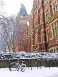 Campus von Leeds-Universität im Winter Stockbilder
