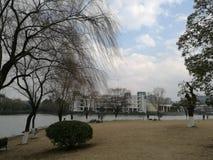 Campus von Zhejiang-Universität Stockbild