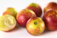 Camu Camu Royalty Free Stock Image