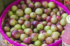 Camu de Camu Photo stock