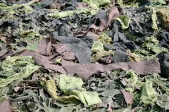 Camuflaje de la materia textil del ejército Imagen de archivo