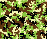camuflar Fotografia de Stock