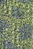 camuflar Imagem de Stock