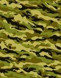 Camuflar tradicional Imagem de Stock Royalty Free