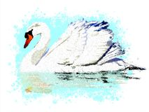 White swan on an abstract blue background of paint splashes. stock photography