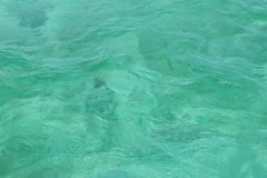 Surface of turquoise Caribbean sea water stock photography