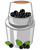 Can with berry currant. Capacity of the full ripe berry currant on white background Stock Photo