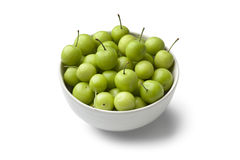 Can Erik plums in a bowl. On white background stock images