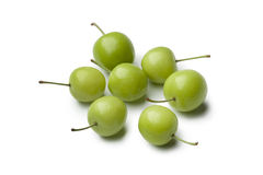 Can Erik plums. On white background stock images