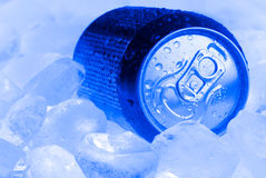Can on ice Royalty Free Stock Images