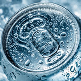 Can on ice Royalty Free Stock Image